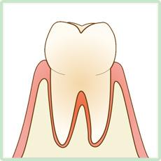 歯科衛生士より